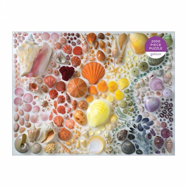 rainbow_seashells.jpg