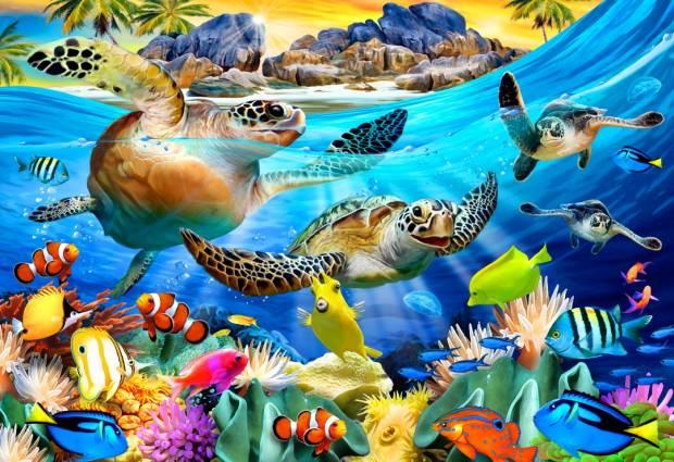 turtle_beach.jpg