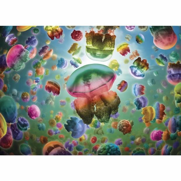 jellyfish-jigsaw-puzzle-1000-pieces.84641-1_.fs_.jpg
