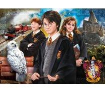 Clementoni - 1000 darabos - 61882 - Harry Potter- bőröndben
