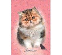 Educa - 100 darabos - 18804 - Perzsa macska