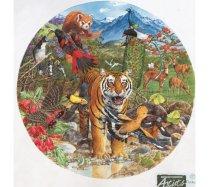 JHG Puzzles - 500 darabos - Himalayan Tiger