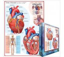 Eurographics - 1000 darabos - 6000-0257 - The Heart