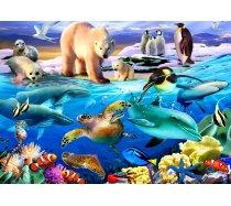Bluebird - 150 darabos - 70401 - Oceans of Life