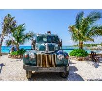 Bluebird - 1000 darabos -70020- Old Truck