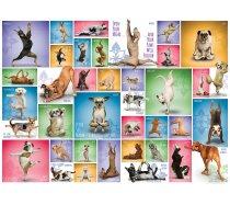 Eurographics - 1000 darabos -6000-0954 - Yoga Dogs