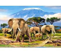 Castorland - 1000 darabos -103188 - Kilimanjaro Morning