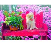 Bluebird - 500 darabos -70042- Puppy in the Colorful Garden