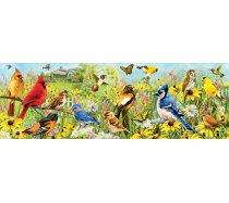 Eurographics - 1000 darabos -6000-5338 - Garden Birds
