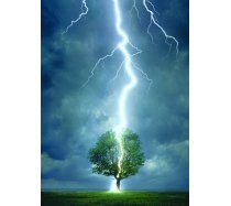 Eurographics - 1000 darabos -6000-4570 - Lightning striking a tree