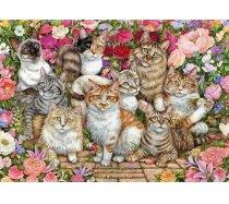 Falcon - 1000 darabos - 11246 - Floral Cats