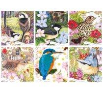 Otter-House - 1000 darabos - 75079 - RSPB - Garden Birds