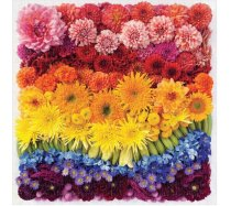 Galison - 500 darabos - Rainbow Summer Flowers