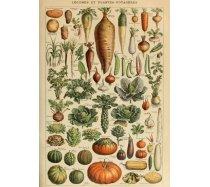 Grafika - 1000 darabos 00593 - Vegetables