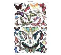 Grafika - 1000 darabos 00588 - Papillons