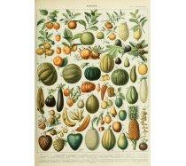 Grafika - 1000 darabos 00592 - Fruits