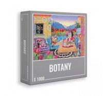 Cloudberries - 1000 darabos - Botany