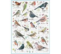 Otter-House - 1000 darabos - 75087 - Birdsong