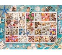 Eurographics - 1000 darabos -6000-5529 - Seashell Collection