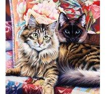 Masterpieces - 1000 darabos - 71814 - Cat-Ology - Raja and Mulan