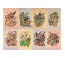 JHG Puzzles - 1000 darabos - Game birds