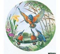 JHG Puzzles - 500 darabos - Kingfisher family